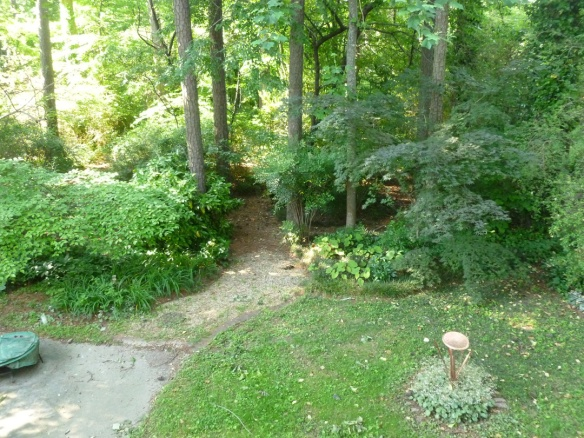 This is looking out over the deck railing into the back yard. My raised bed garden is just below this view.
