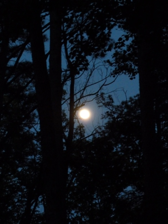 The full Strawberry Moon!