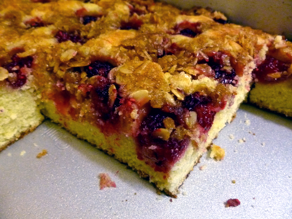 Breaking The Fast Raspberry Almond Coffee Cake Bits And