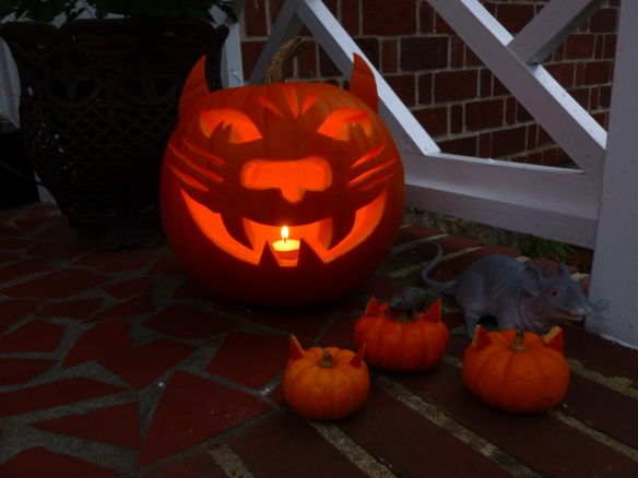 "Our Halloween ""Punkitty"" and the two kitties that inspire are below!"