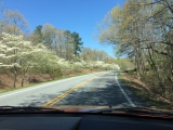 The drive up to Amicalola.