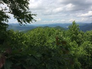 Beautiful views of the Blue Ridge Mountains...