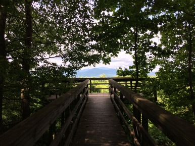 The walkway to the overlook at Black Rock Mountain.