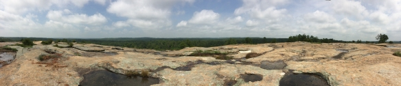 Extreme panoramic view from the summit of Arabia Mountain.